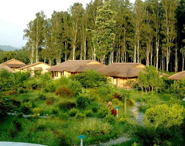Jim's Jungle Retreat, Corbett National Park, Uttarakhand