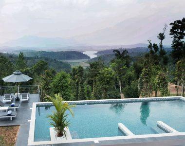 Amaryllis, Wayanad, Kerala